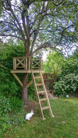 Carpentry and bespoke woodwork